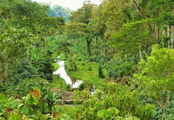 Fertile valley near La Fundadora, Northern Nicaragua