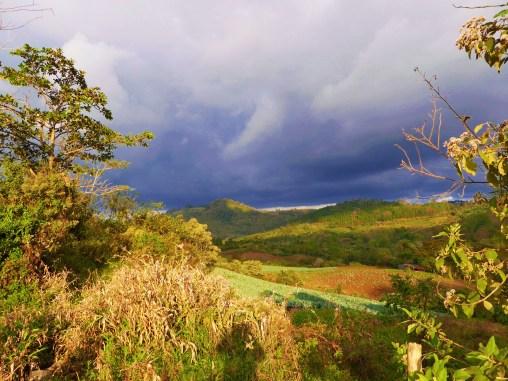 Fields of crops near La Fundadora community cooperative, Northern Nicaragua