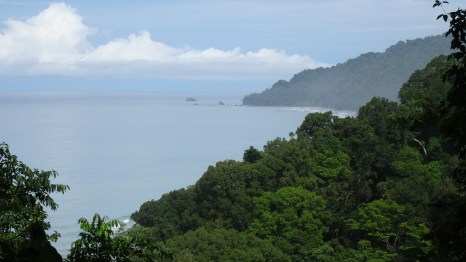 A spectacular view of the ocean from the hills of the Corcovado National Park in Costa Rica