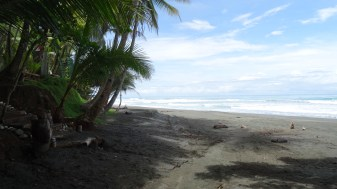 Chilling in the shade during a hot day at a beach in the Corcovado National Park - Costa Rica