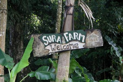 The rustic sign showing that we have arrived at Sura Farm in Costa Rica