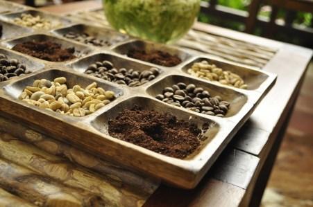 Coffee workshop near Salento in Colombia (pic by Zaia)