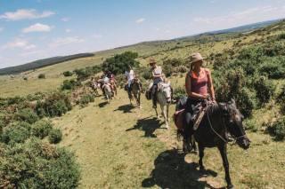 Horses of Light ride in Rocha, Uruguay