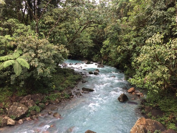 The Celeste River in the middle of the rainforest in Costa Rica