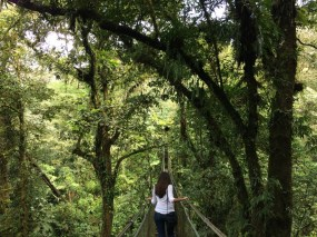Trekking in the rainforest around Tenorio Volcano National Park