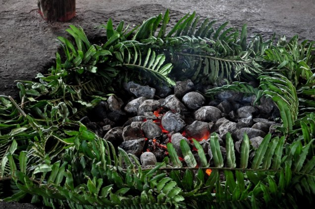 Getting ready to prepare the curanto, meat, vegetables and potatoes cooked undergornd, a traditional food of Chiloe Island