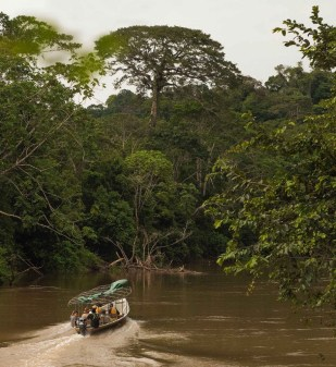 A boat ride excursion in the Yasuni National Park, Amazon jungle, Ecuador