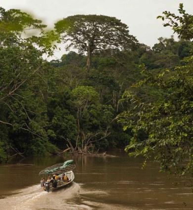 A boat ride excursion in the Yasuni National Park, Amazon jungle, Ecuador