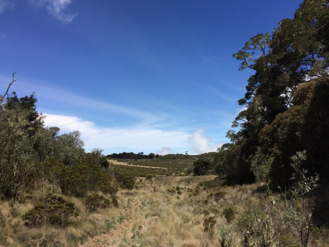 Entering into the Valley of the Lions, while trekking from San Jeronimo to Los Crestones lodge