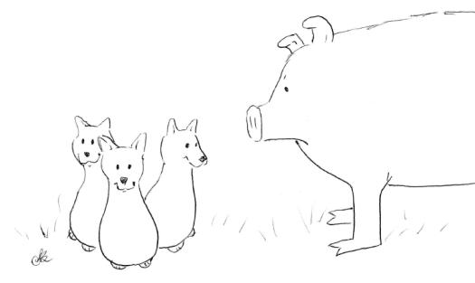11-10-boared