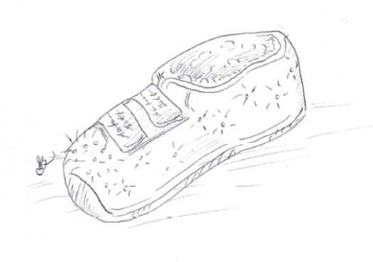 11-4-autoshoes