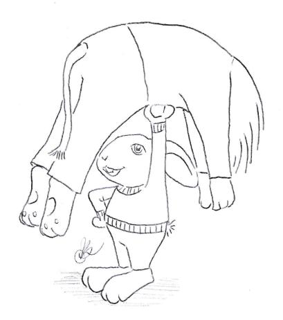 1-13-ninja-rabbit