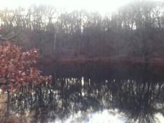 Blackstone Pond