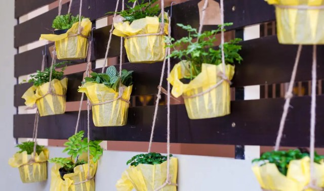 Exciting Ways A Vertical Garden Makes Small Balcony Gardening Possible