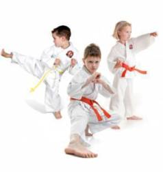 3 Karate Kids