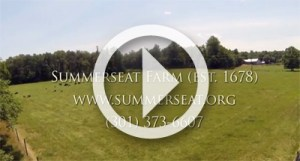 Summerseat Arial View