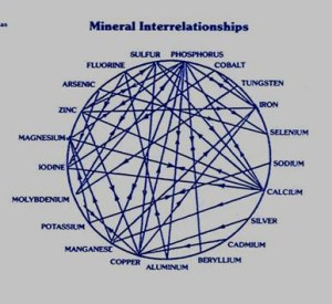 CHART-mineral interrelationships