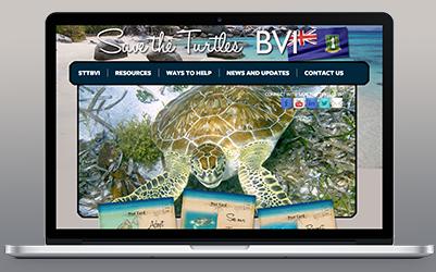 Save The Turtles BVI