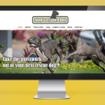 Just Launched: Adopt A Trained Dog