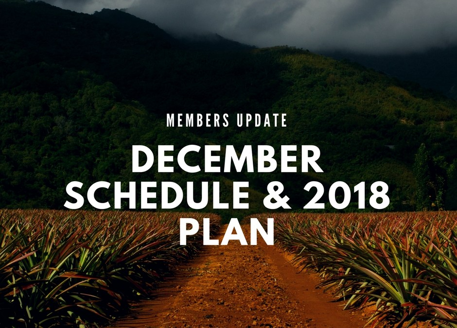 Members Update: Sunberry December Schedule + 2018 Plan