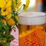 五十嵐貴久『愛してるって言えなくたって』ビールとともに飲み込むキモチ