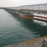 浜大津港周辺バス釣りポイント