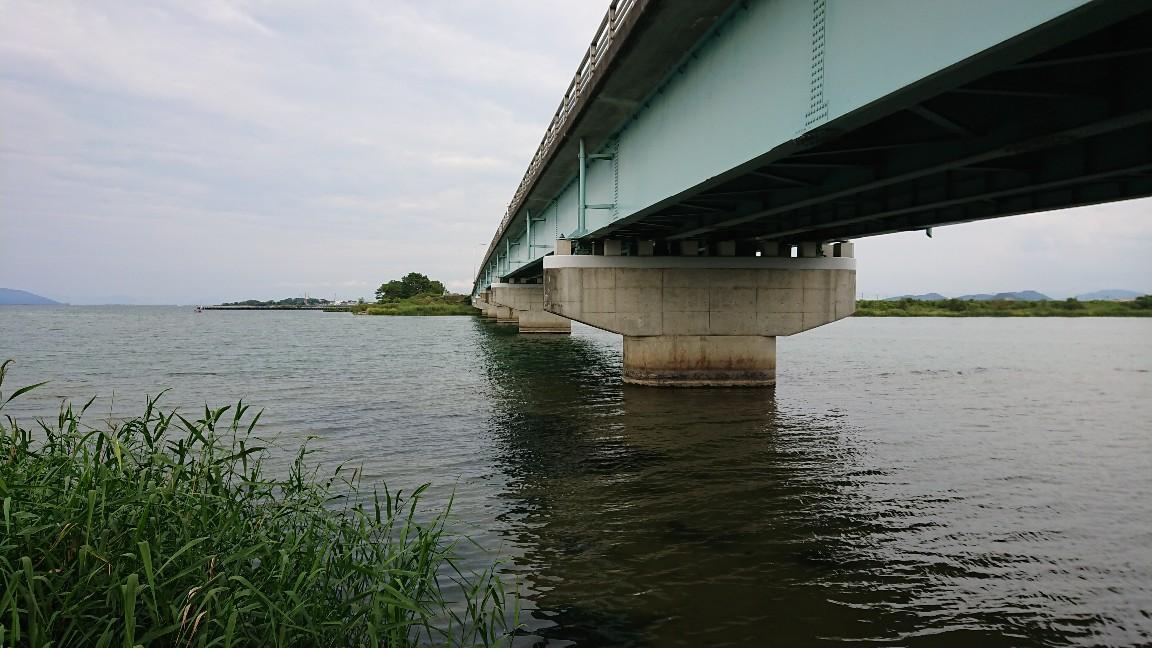 野洲川河口周辺バス釣りポイント