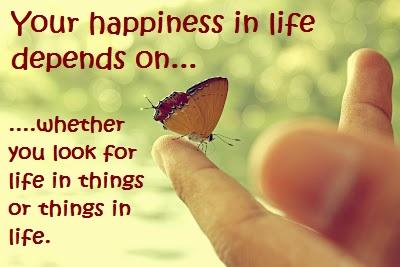 Life in Things