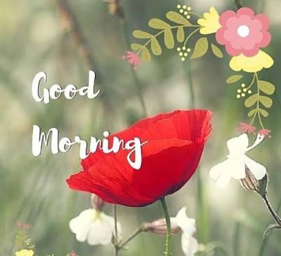 GOOD MORNING MESSAGE #2 – Sunbyanyname