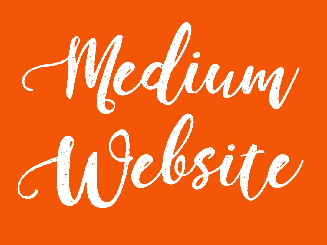 Website Designer Sunshine Coast - Medium Web Package