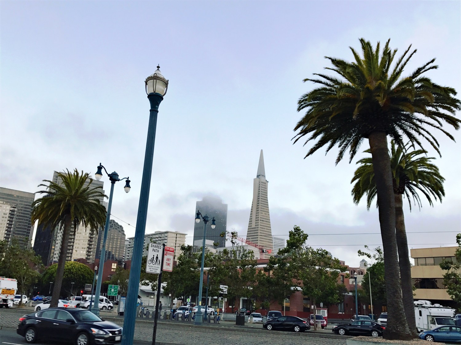San Francisco: 24 Hours in the Golden City