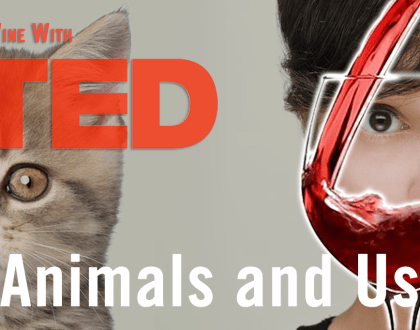 "Thursday, June 21, come to Wine with TED ""Animals and Us"""