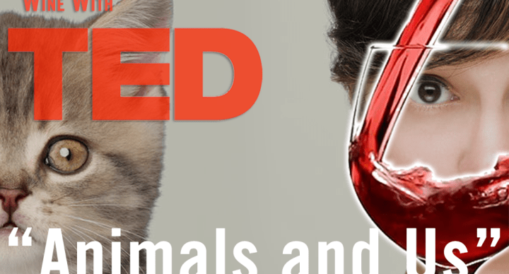 """Thursday, June 21, come to Wine with TED """"Animals and Us"""""""