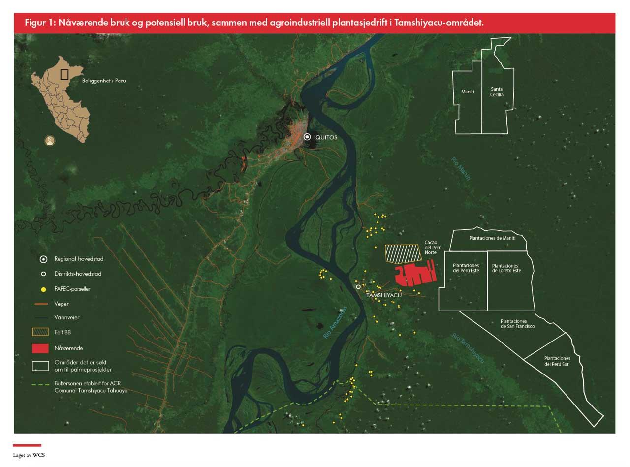 Satellite image Tamshiyacu