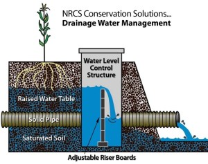 Drainage Water Managment Below Ground