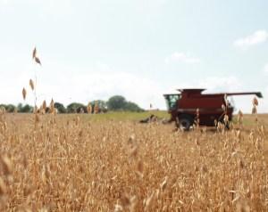 Sunderman Harvest 2020