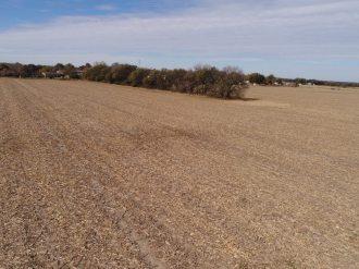 40 Acres For Sale-Butler County Kansas