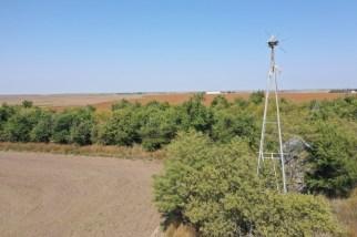 160 ACRES FOR SALE NEAR OLMITZ, BARTON COUNTY KANSAS
