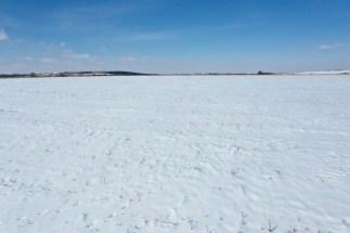 75.4 Acres Greenwood County Kansas Tillable Land For Sale