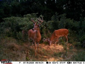 Cowley County Hunting Land For Sale