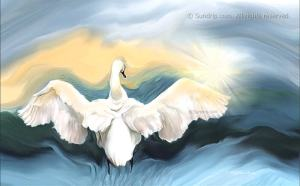Swan and Star - digital art. Sundrip on Redbubble