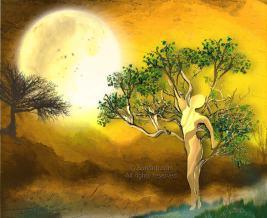 Golden Moon - Sundrip on Redbubble