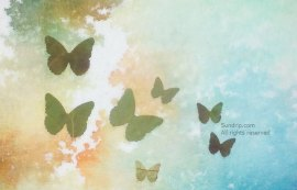 Butterflies cut from dried leaves - available only on Sundrip