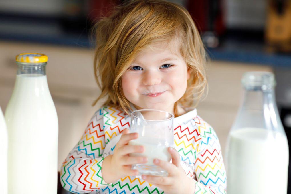 Ragazza adorabile del bambino che beve latte di mucca per colazione.