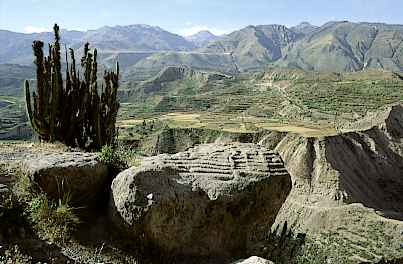 highlights of Peru coica valley