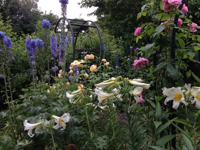 Summer 2013 Garden