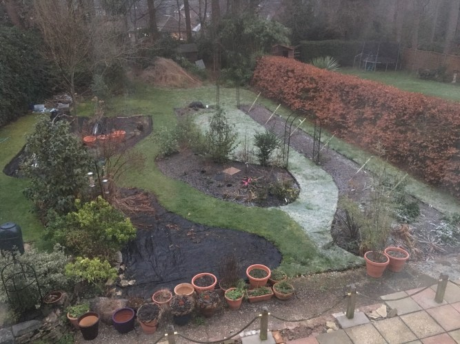 The Cold Side of the Garden