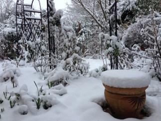 Terracotta Pot in Snow