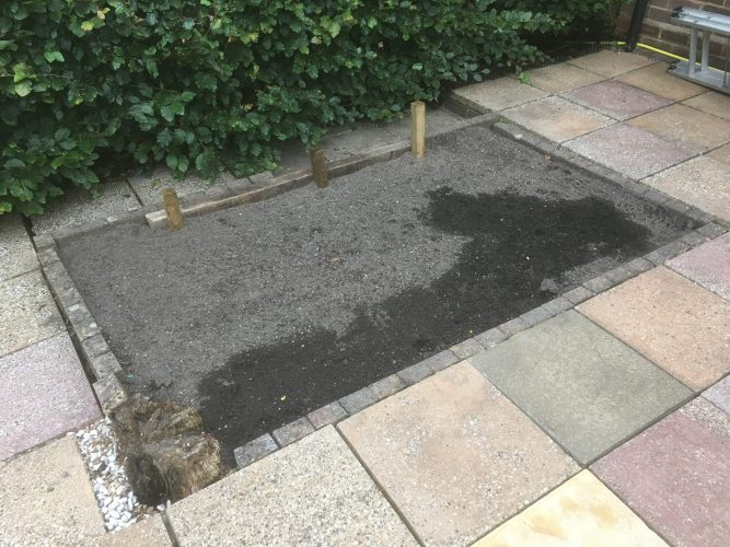Filling Paths and Planting Plants