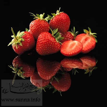 https://i1.wp.com/www.sunna.info/souwar/data/media/46/02h_ERDBEEREN.jpg